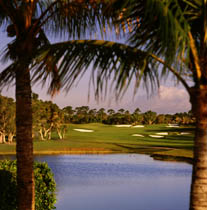 Bahama Golfing at Our Lucaya Resort Freeport Bahamas Our Lucaya Resort
